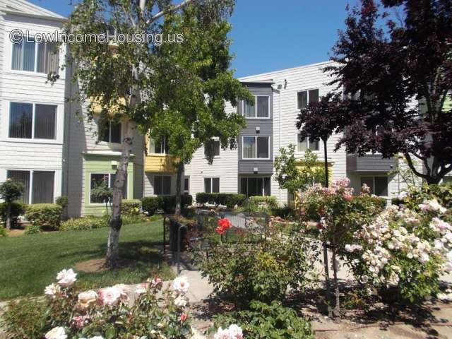 Cypress Gardens Apartments San Jose Senior Apartments