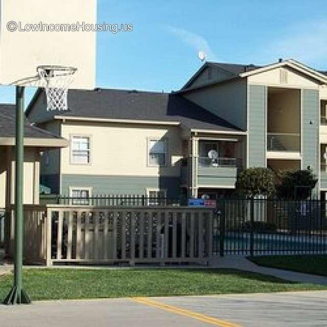 Summertree Apartments: Terracina At Springlake Family Apartments Woodland