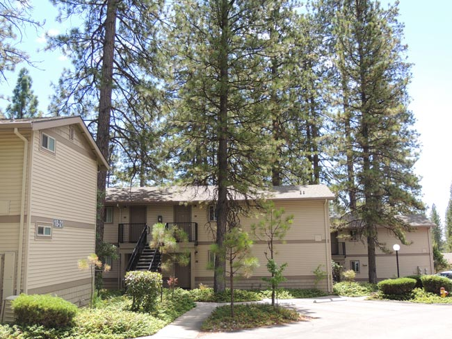 114206 springhill gardens apartments 95945 pwe - Springhill Gardens Apartments Grass Valley Ca