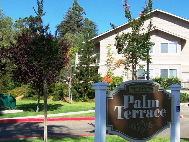 Palm Terrace Apartments Auburn