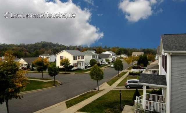 Ashburn Greene St Clairsville