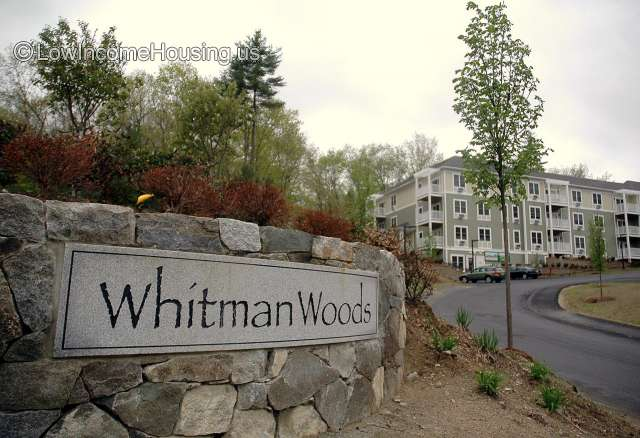 Whitman Woods - MA