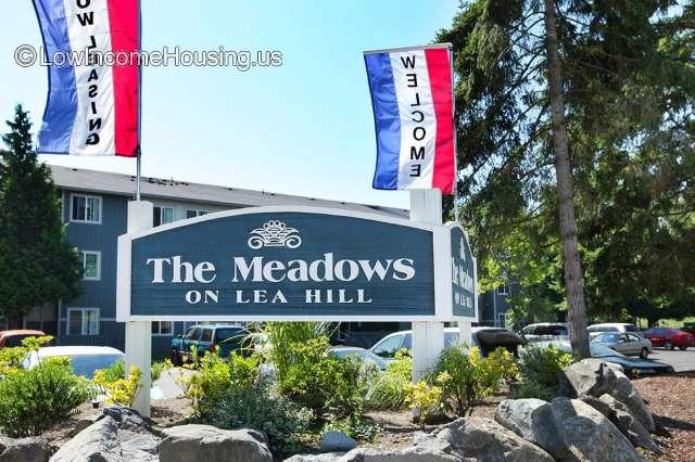 Meadows on Lea Hill