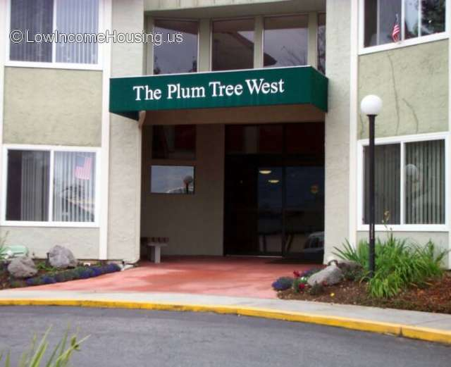 Plum Tree West Apartments
