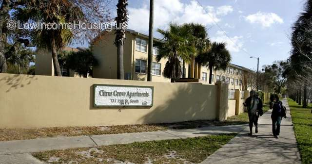 Citrus Grove Apartments
