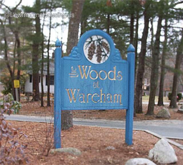 Woods At Wareham