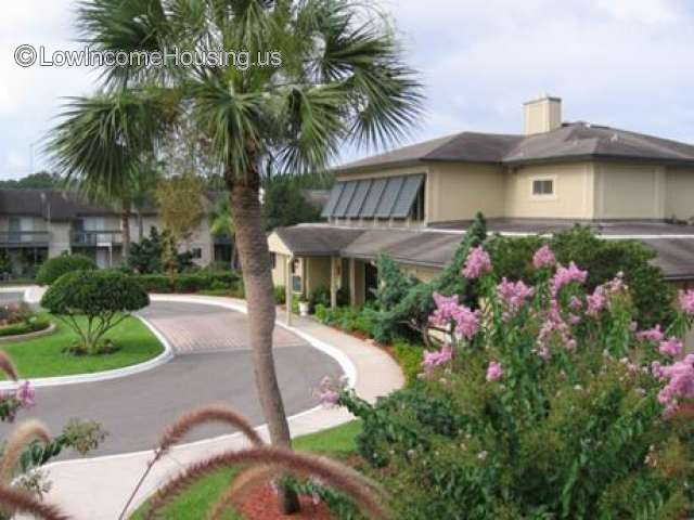Outdoor picture of driveway in front of 2 story front office building. A palm tree to the right of the building and residential area in the back.